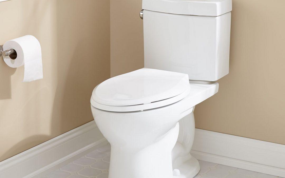Gut Health & Your Diet – The Scoop on Poop
